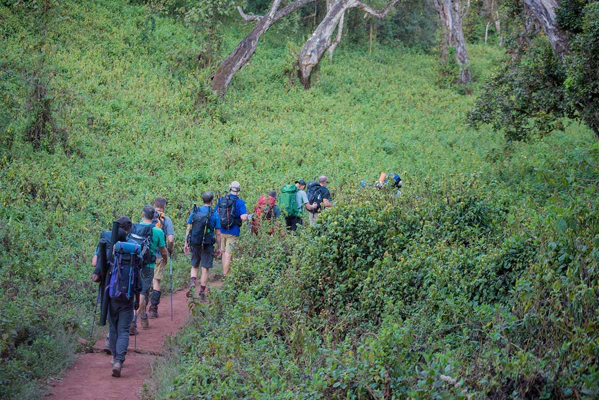 Kilimanjaro machame route 7 days