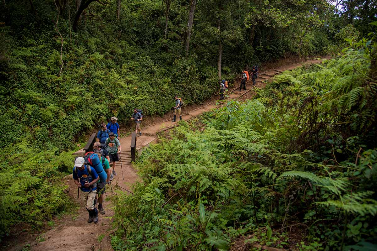 6 days kilimanjaro climb machame route