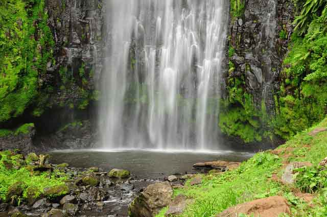 Materuni Waterfall 1 Day Tour